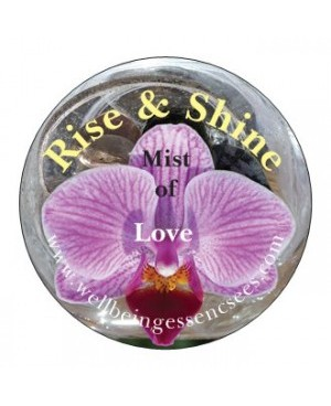Rise and Shine Diamond and Orchid Essence Mist